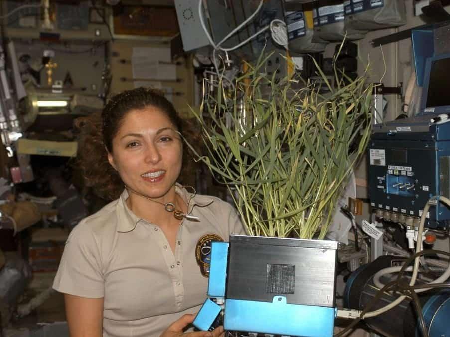 Anousheh Ansari, touriste spatiale à bord de l'ISS.